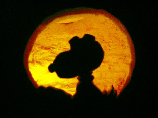 Give This A Try Before You Carve Your Jack O 39 Lantern This