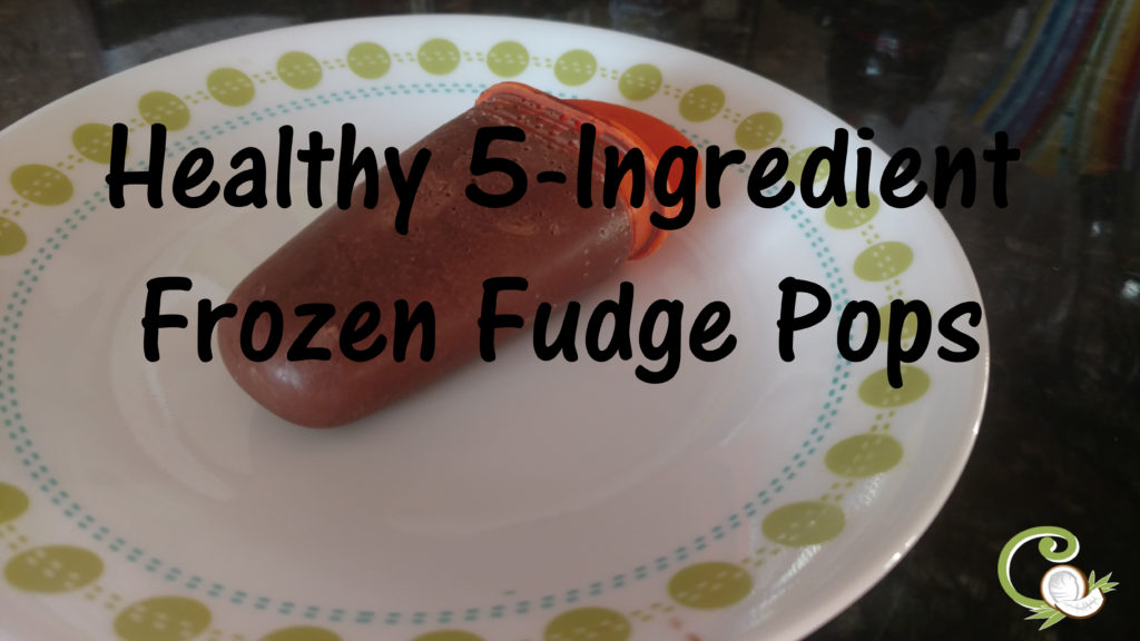 Healthy, 5-Ingredient, Frozen Fudge Pops | C is For Coconut