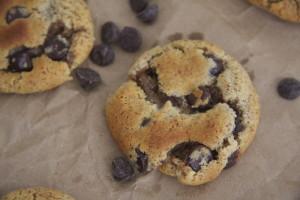 paleo cc cookies the bite sized baker